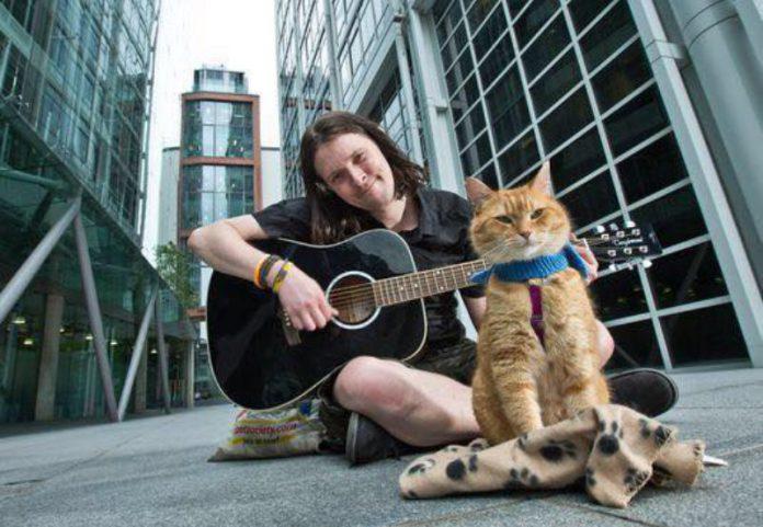 Gato Bob y James-Bowen