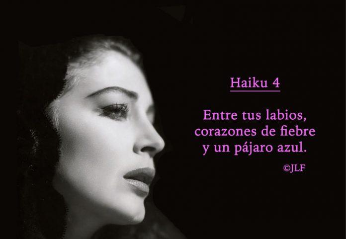 Entre tus labios Haikus 4 JLF