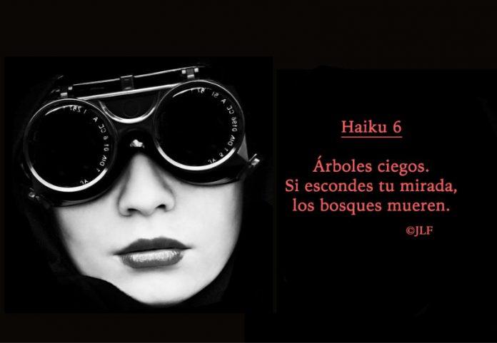 Arboles ciegos... Haikus JLF