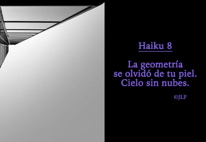 La geometría se olvido... Haikus JLF