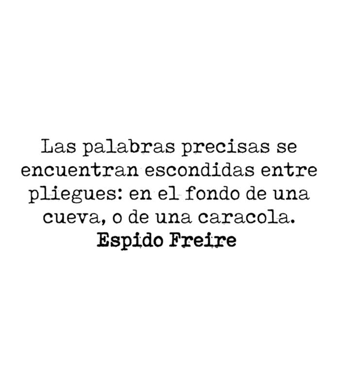 Las palabras precisas se encuentran escondidas entre pliegues: en el fondo de una cueva, o de una caracola. Espido Freire.