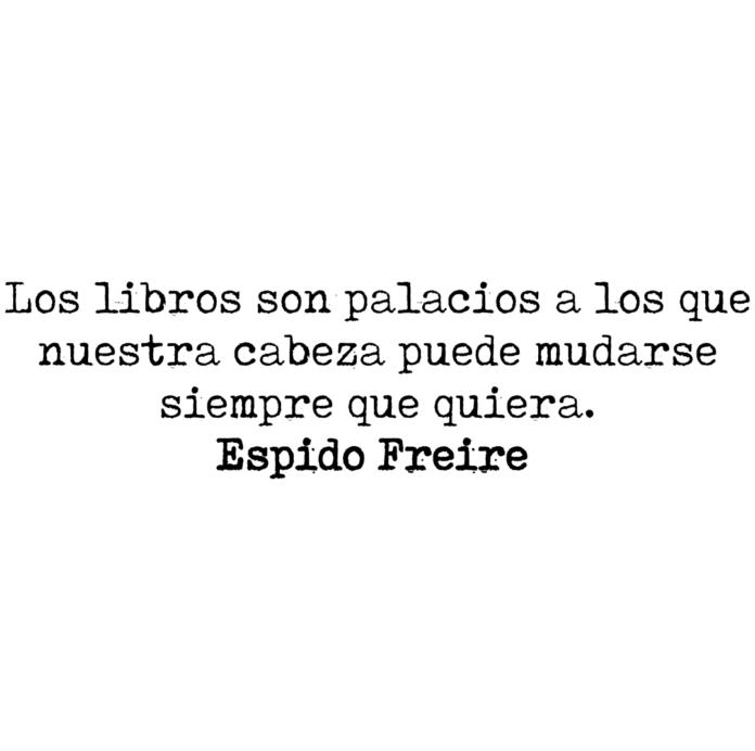 Los libros son palacios a los que nuestra cabeza puede mudarse siempre que quiera. Espido Freire.